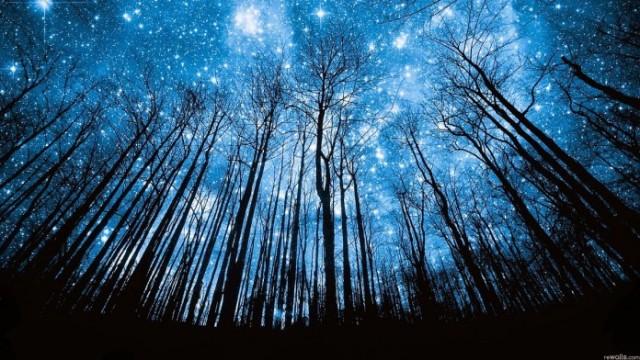 estrelas-1-696x392